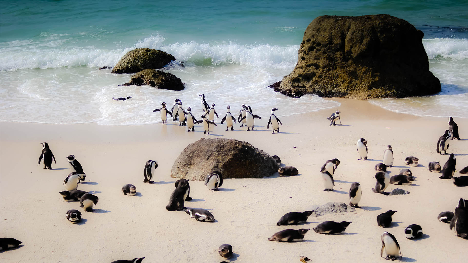 South Africa Spotlight: 3 Western Cape hotels worth visiting