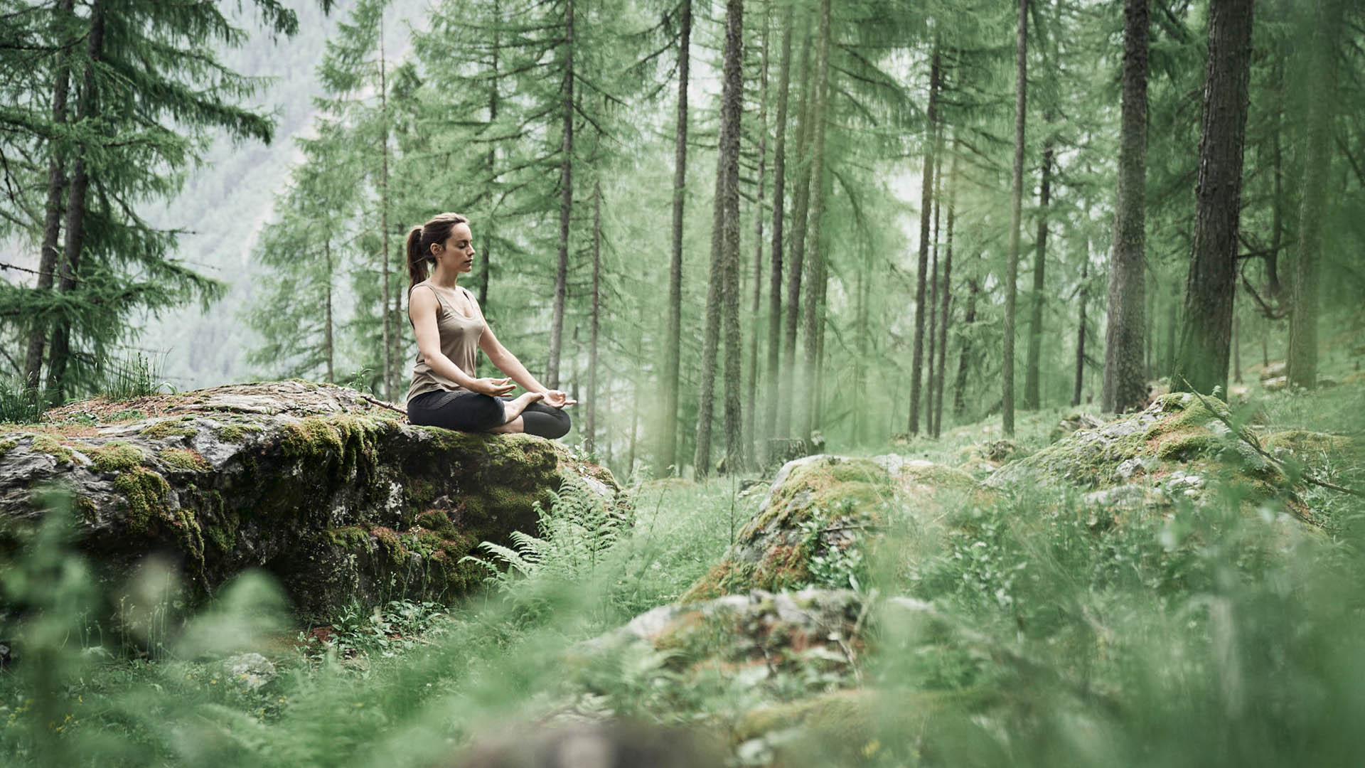 Forest bathing and tree therapy: where to spa with nature