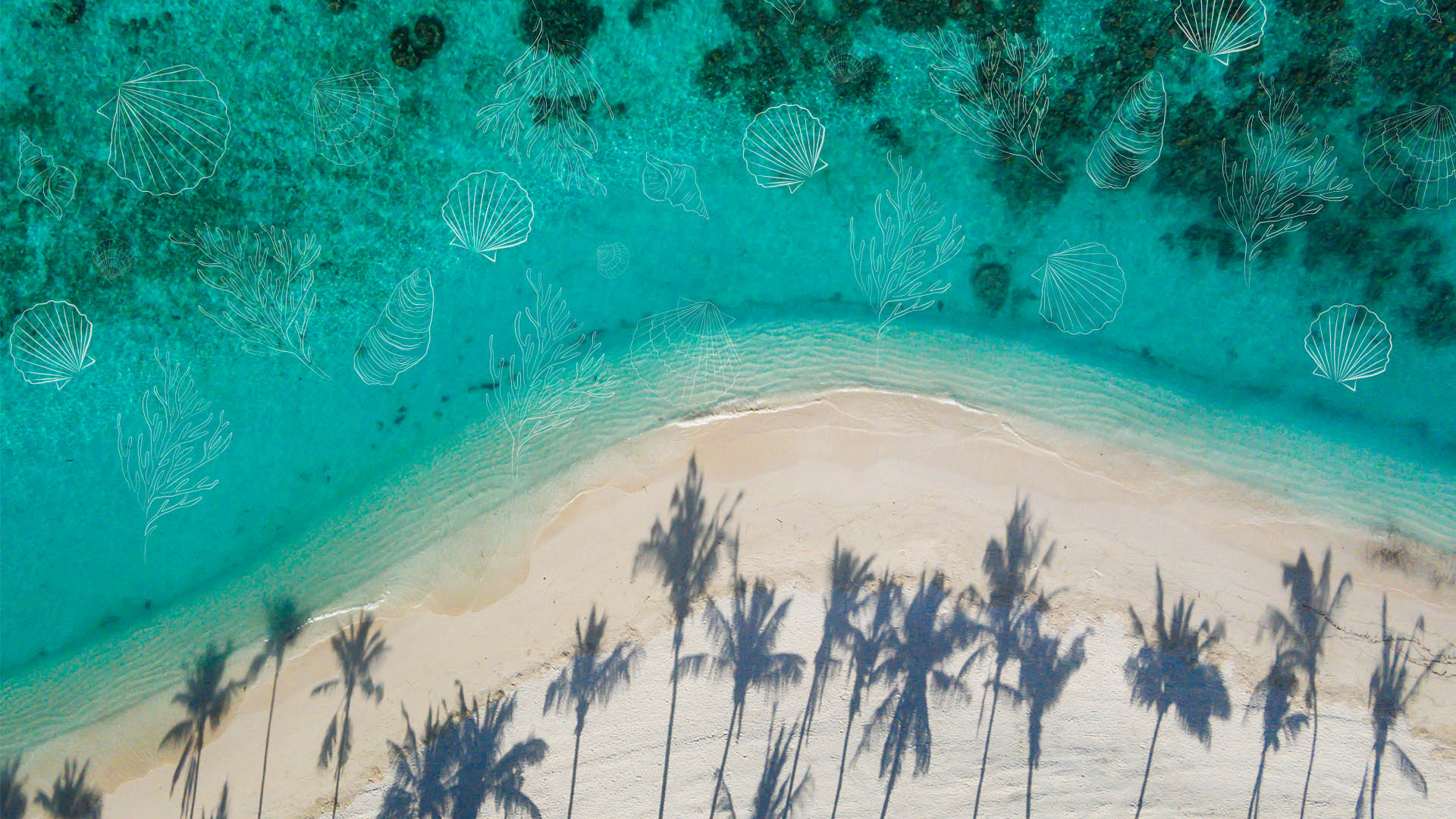 World Oceans Day: 5 boutique hotels making waves in marine conservation
