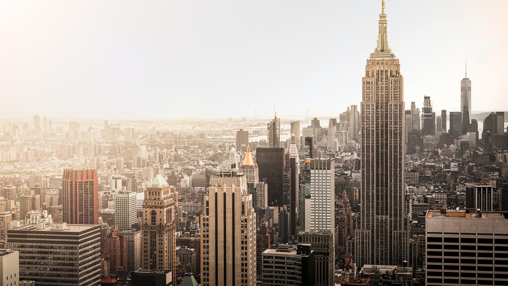 The ultimate New York city guide